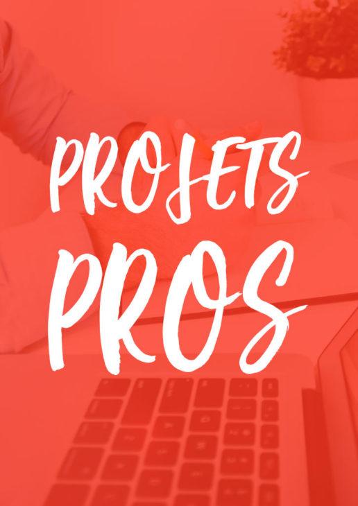Projets Professionnels et Entreprises