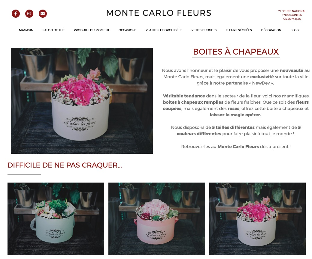 Site-internet-Monte-Carlo-Fleurs-4